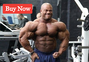 steroid cycles online